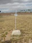 Isidro Torres Grave