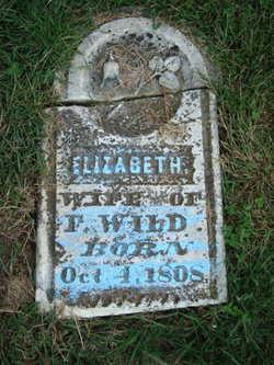 Elizabeth Chestnutt HS Antioch Cemetery Millville Ray Co MO