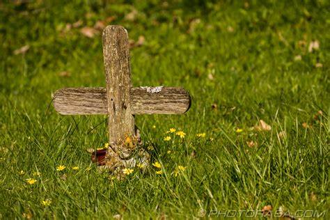 cross on farm