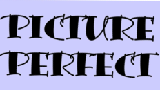Picture Perfect logo