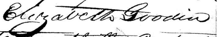 Elizabeth Goodin Land Sale of Alexander Goodin 1839