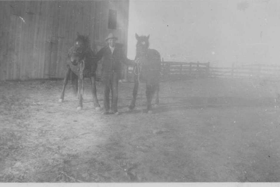 Gpa & horses